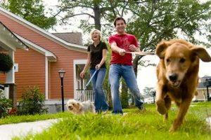 Oak Terrace Preserve dog walkers