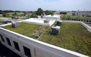 1600 Meeting Green Roof