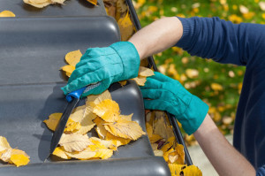 Cleaning Leaves From the Gutters