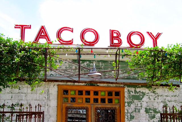 Taco Boy